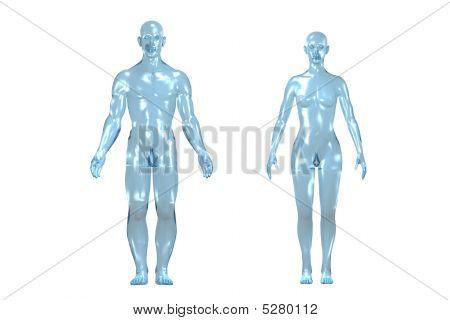 3D Human Body