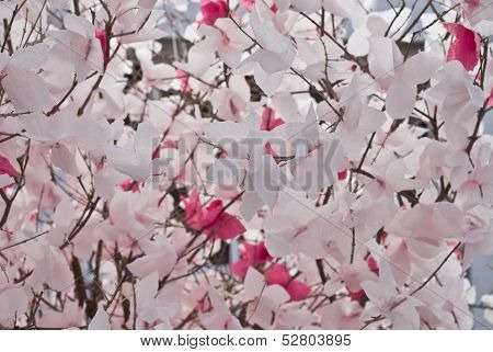 The Flowers From Paper