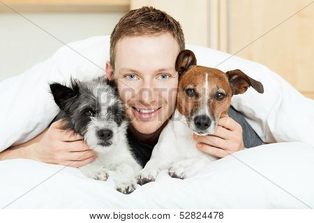 Dog Owner In Bed