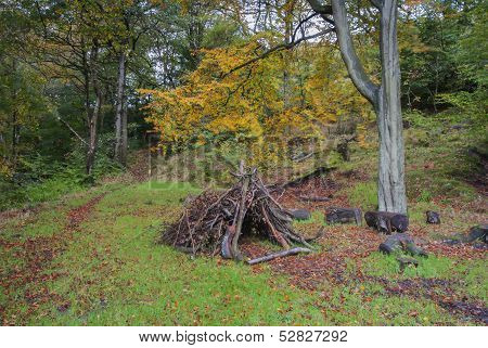 woodland den made of branches