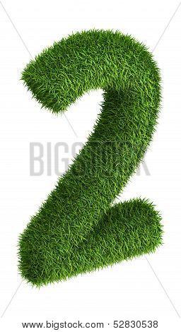Natural grass number 2
