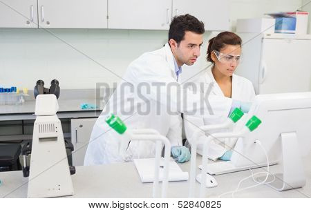 Two serious researchers using a computer in the laboratory