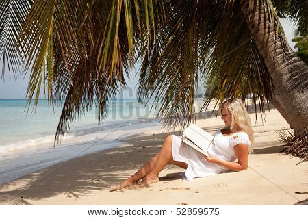 Blond Women Reading Under Palm Tree