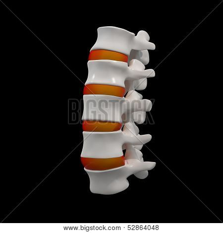3d rendered illustration - lumbar side view