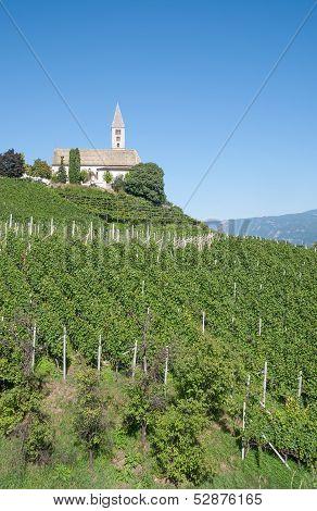 Kurtatsch,South Tyrol,Italy