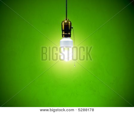 Compact Fluorescent Bulb - On Simple Fixture