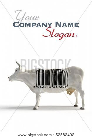 White cow with a huge bar code on its torso instead of cow skin patterns