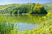 picture of semen  - One of many lakes at Semenic national park - JPG