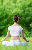 Backview of woman who sits in asana position zen gesturing. Concept of healthy lifestyle and relaxat