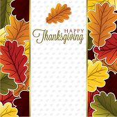 stock photo of acorn  - Acorn leaf Thanksgiving card in vector format - JPG