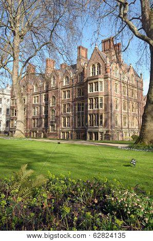 Garden of Lincolns Inn,  London