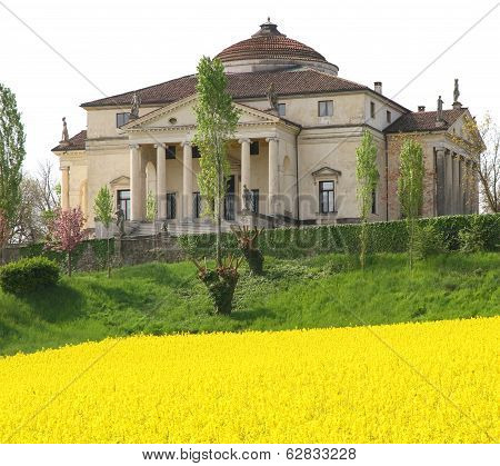 Villa La Rotonda With Yellow Flower Field Of Rapeseed In Vicenza 2