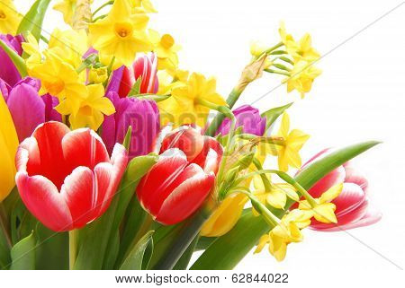 bouquet of tulip and daffodils flower