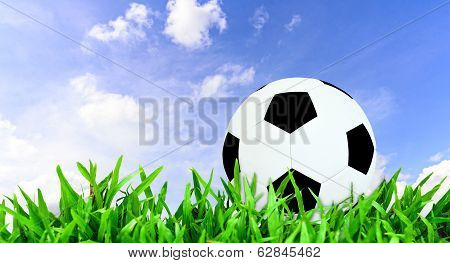 Football Or Soccer Ball On A Green Lawn
