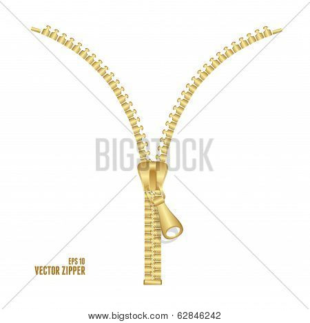 Vector realistic golden zipper illustration