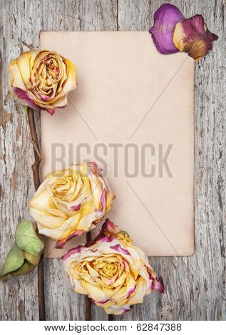 Dry Roses And Paper On The Old Wood