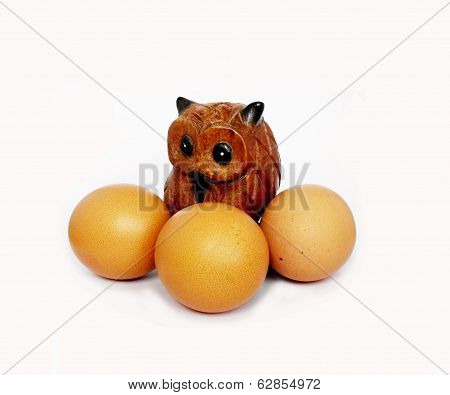 Owl with tripple egg