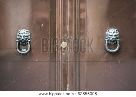 Old door with lion head  knocker