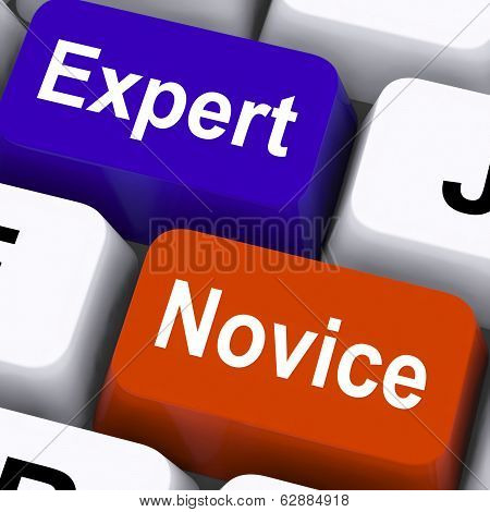 Expert Novice Keys Show Beginners And Experts