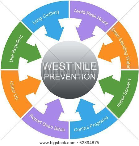 West Nile Prevention Word Circles Concept