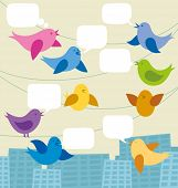 Vector card with birds and speech bubbles