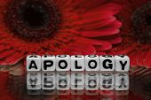 picture of apologize  - Apology text message with red flowers in the background.