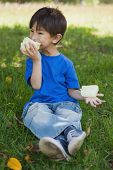 picture of candy cotton  - Full length of a relaxed little boy eating cotton candy at the park - JPG