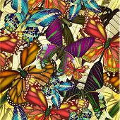 image of summer insects  - Seamless pattern with colorful butterflies - JPG