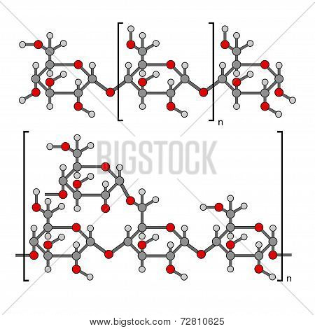 Structural Chemical Components Of Starch: Amylose, Pectin