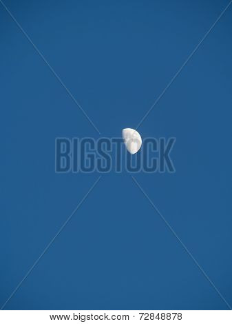 Right half moon in the silent day sky