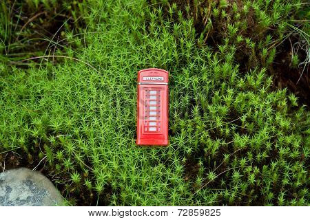 Red phone booth in the moss