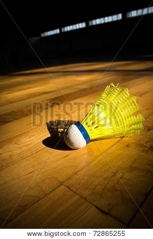 Shuttlecock Badminton
