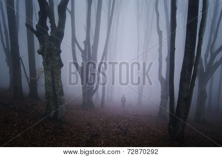 Man ghost in creepy forest with fog on Halloween