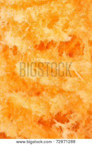 Closeup Of Ripe Pumpkin
