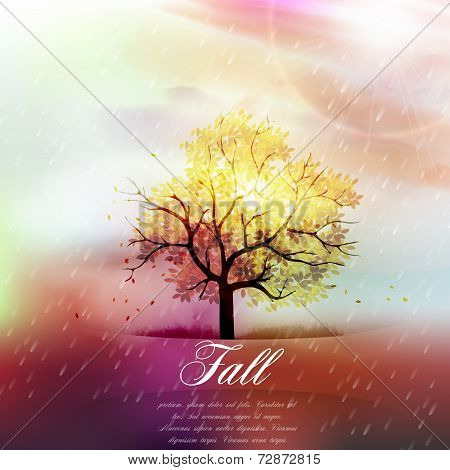 Fall Background - Warm Autumn Colors, Branch Covered with Fall Leaves and Rain - Vector Illustration