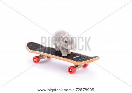 Hippo On The Fingerboard