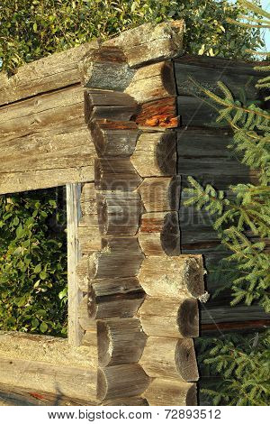 Nature Eating Old Wooden Building