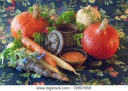 Pumpkins carrots seeds butternut squash and herbs - Still life composition with seasonal vegetables