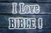 picture of adam eve  - I Love Bible Concept text on background - JPG