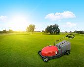 pic of grass-cutter  - a lawnmower on grass at backyard in summer - JPG