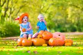 pic of happy halloween  - Happy children at pumpking patch during Halloween little girl in a blue dress boots and cowboy hat and baby boy having fun together trick or treating on a sunny autumn day - JPG
