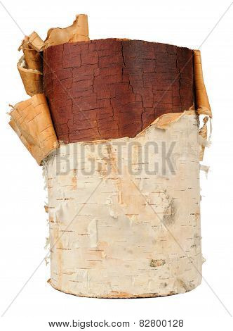 Birch Wood Log Isolated On White Background