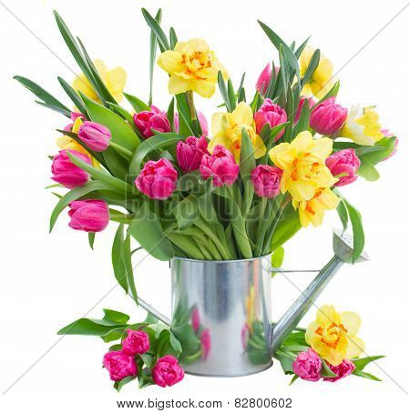Bunch Of  Tulips And Daffodils In Vase