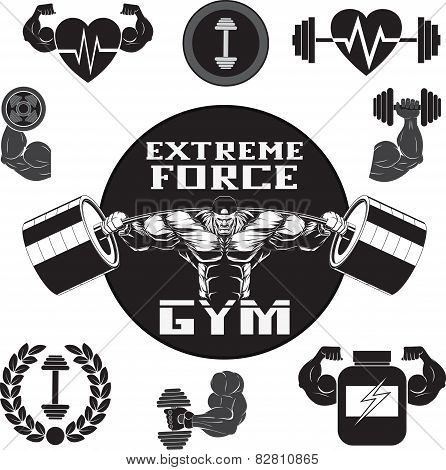 Vector set gym