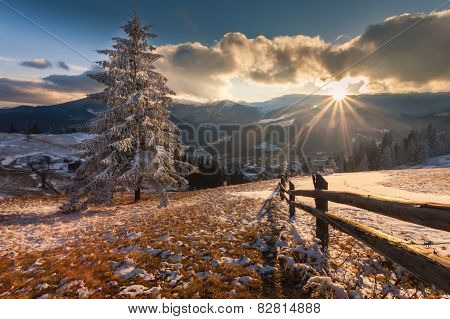 Majestic Winter Landscape Glowing By Sunlight.