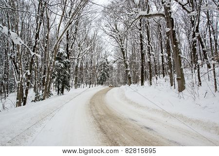 Snow Covered Rural Road