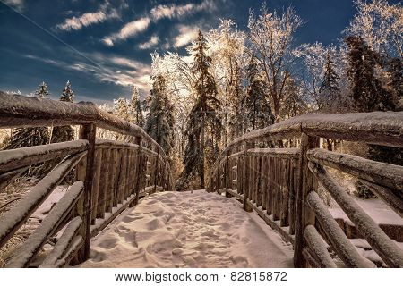 Frozen Bridge In A Park Landscape