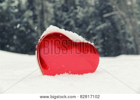 Heart Shaped Box In A Snowy Forest