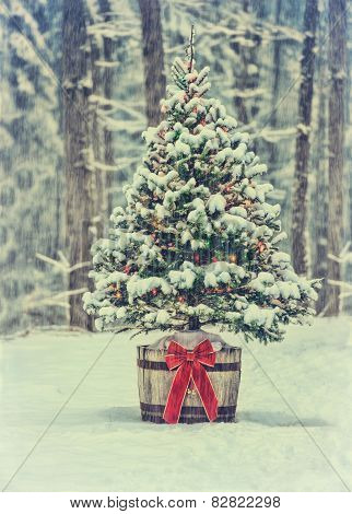 Snowy Christmas Tree With Colorful Lights In A Forest - Vintage