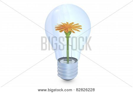 Bulb, Ecological Concept
